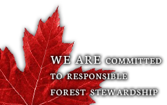 We are committed to responsible forest stewardship